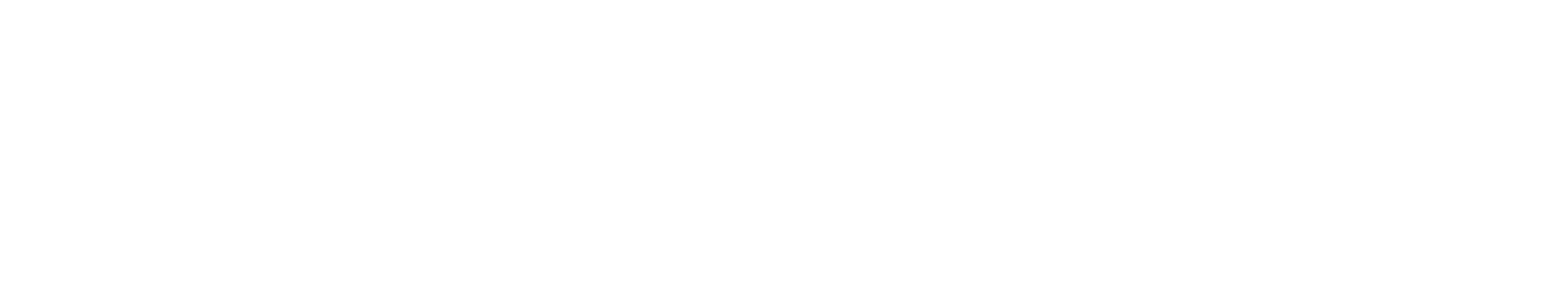 Hammer Price Logo White